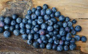 Bio tőzegáfonya ital a húgyuti betegségek ellen